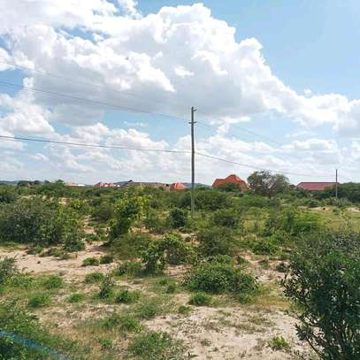 Nice plot for sale at dodoma Michese. image 3