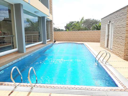 3 Bedrooms Immaculate Homes For rent In Oysterbay image 10