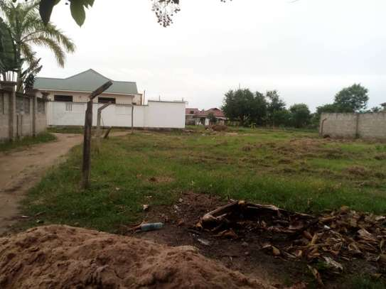 plot for sale at boko magengeni image 1