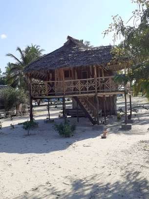Beautiful Beach Campsite For Sale at Bagamoyo image 2