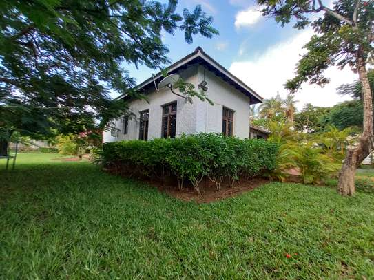OYSTERBAY BUNGALOW FOR RENT image 1