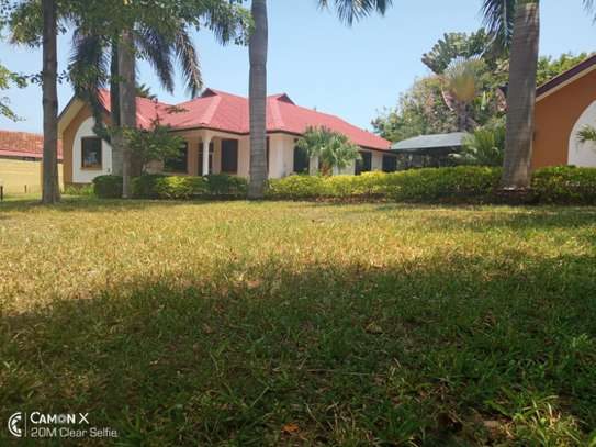 3 bed room villa house for rent at oyster bay image 5