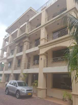 2 bed room brand new apartment for rent masaki image 1