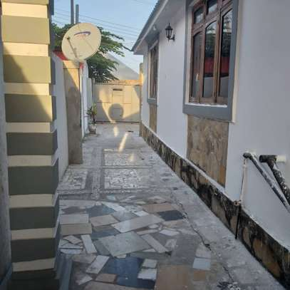 3bed apartment at upanga $1300pm for rent image 3
