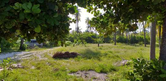 Land for sell image 7