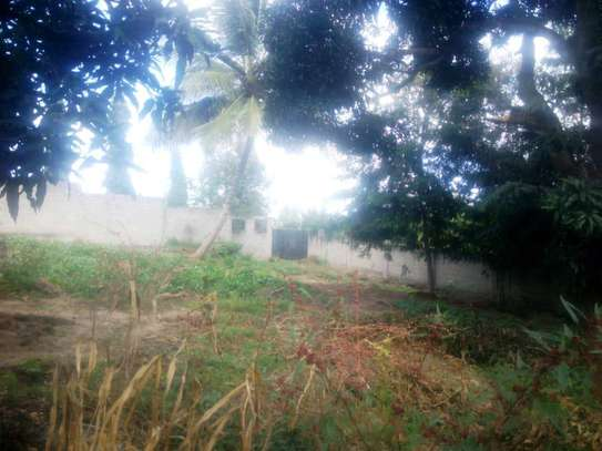 A plot with 3200sqm for sale image 3