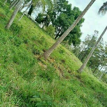 Land for Sale at Kibamba Near National Muhimili hospital image 1
