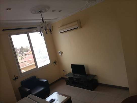 One bedroom fully furnished image 4