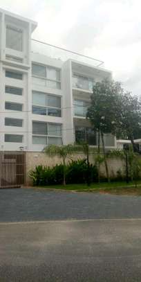 3bdrms full furnished Apartiment for rent located at Masaki opposite shoppers plaza image 1