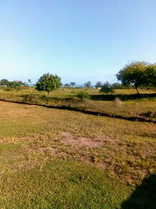 OCEANFRONT LAND FOR SALE IN PEMBA ISLAND-ZANZIBAR image 6