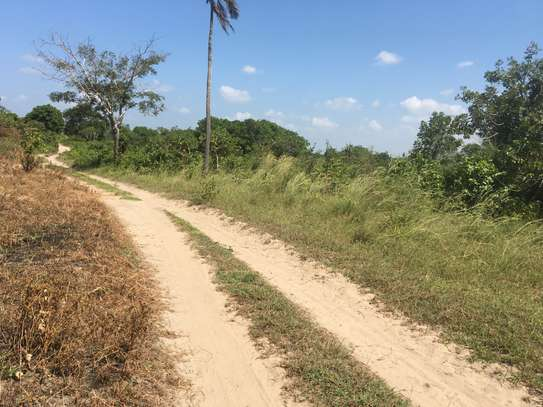 FARMLAND FOR SALE AT BUMA IN BAGAMOYO TOWN image 4