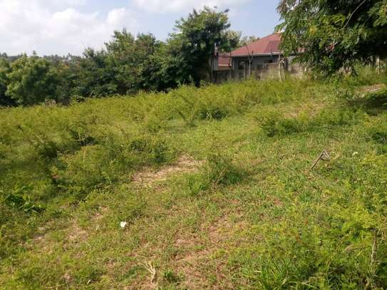 plot for sale at goba contena image 13