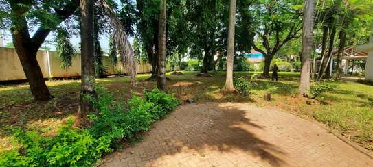 a 5bedrooms BUNGALOW  100metres from the BEACH at OYSTERBAY is now for SALE image 9