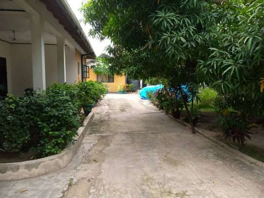 2bed house for rent at mikocheni b  good location image 3