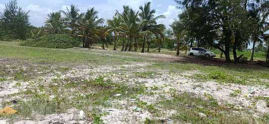 Beach plot for sale at bagamoyo image 2