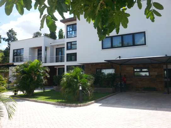 5 Bedrooms Home For Rent In Oysterbay image 2