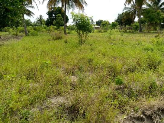 Plot for sale Mivumoni Madale-1.5 km from main road image 2