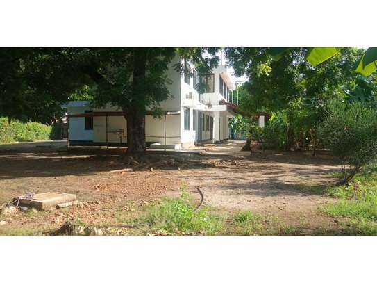 4bed house at oyster bay$1500 image 5