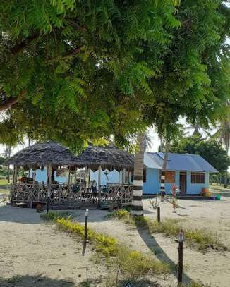 9 ACRES BEACH PLOT  AT BAGAMOYO image 9