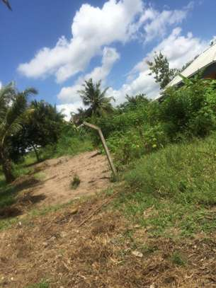 3 bed room big house for sale stand alone   at goba kulangwa image 7