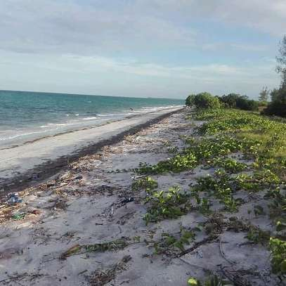 9 Acres of a Commercial Titled-Beach-Land at Mapinga Bagamoyo. image 1