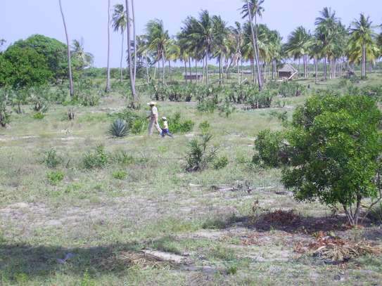 3 Acres Beach Plot  for Sale, Pangani - Tanga image 4