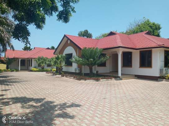 3 bed room villa house for rent at oyster bay image 1
