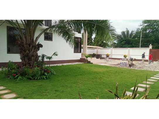 3bed house at mikocheni warioba $1200pm image 5