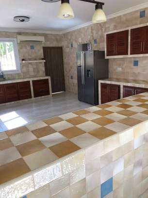 4 Bedrooms Large Home For Rent in Oysterbay image 11