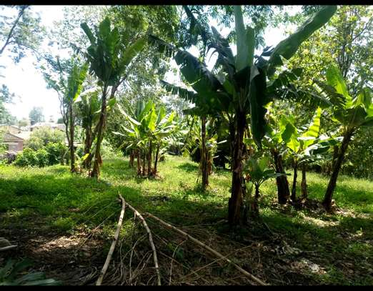 1 ACRE OF LAND FOR SALE AT SAKINA image 2