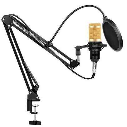 NW 800 CONDENSER MIC