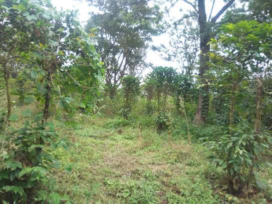 Land for sale at Burka and Sable square coffee estates