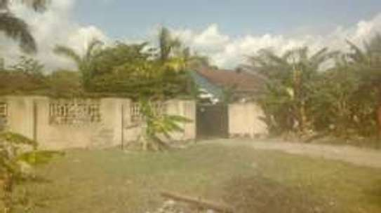 HOUSE AT TANGI BOVU image 2