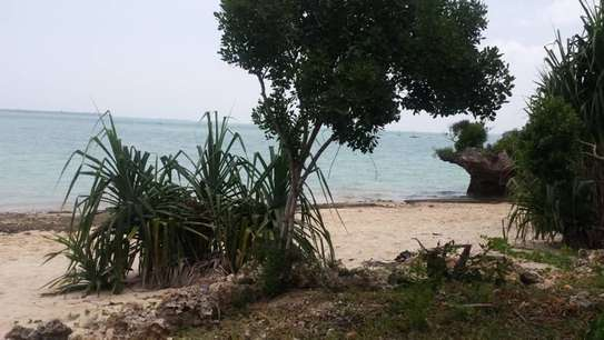 Lovely Beachfront Property on Menai Bay, Unguja Ukuu, Zanzibar image 10