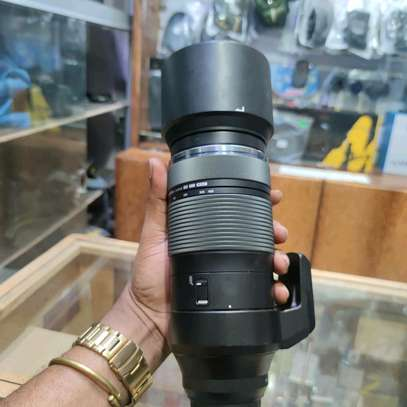 Olympus M.Zuiko Digital ED 100-400mm F5.0-6.3 IS Lens for Micro Four Thirds Cameras image 8