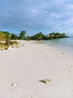 OCEANFRONT LAND FOR SALE IN PEMBA ISLAND-ZANZIBAR image 12
