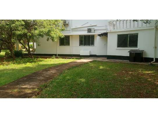 4bed house at masaki with mature garden,pool,generator $5000pm image 14