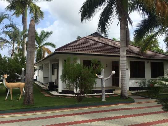2 & 3  Bedrooms Homes for Lease  in Jangwani Beach image 9