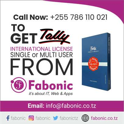 Tally Software  |Get Tally International License (Single / Multi) User from Fabonic image 1