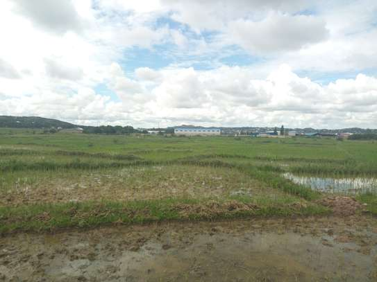 Industrial Plot for Sale Mwanza image 2