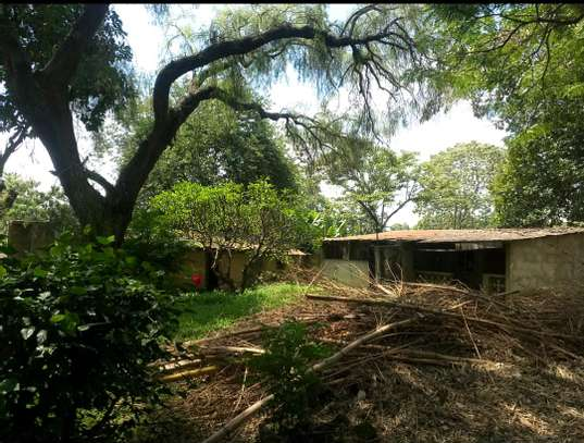 1 ACRE OF LAND FOR SALE AT SAKINA image 3