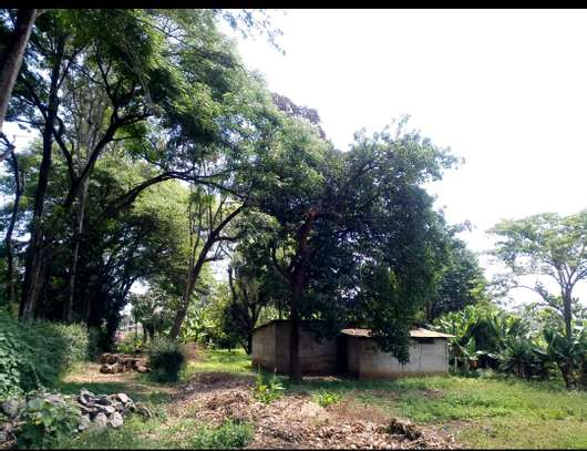 1 ACRE OF LAND FOR SALE AT SAKINA image 1