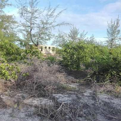 9 Acres of a Commercial Titled-Beach-Land at Mapinga Bagamoyo. image 5
