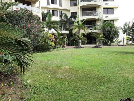 3 Bedrooms (Plus) Study Spacious Apartmnts For Rent in Oysterbay