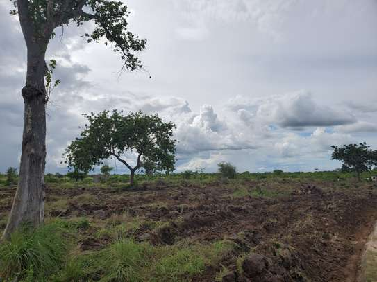 3 acre plot for sale at Bagamoyo image 3
