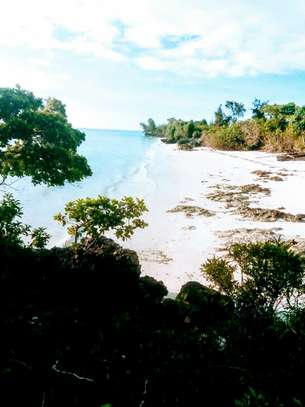 OCEANFRONT LAND FOR SALE IN PEMBA ISLAND-ZANZIBAR image 11