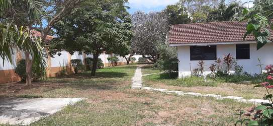 3 Bedroom House (Plus 2 Bdrm Guest Wing) For Rent In Oysterbay. image 5