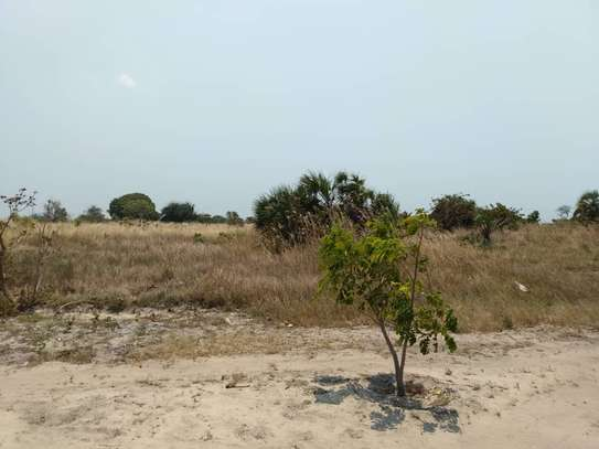 beach plot for sale at kigamboni available image 4