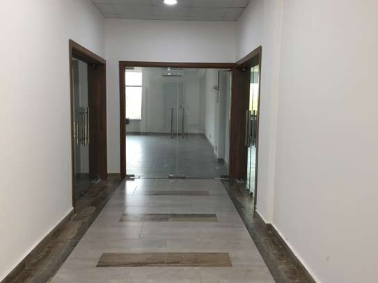 Premium 150sqm Plus Office Space In Oyster Bay image 4
