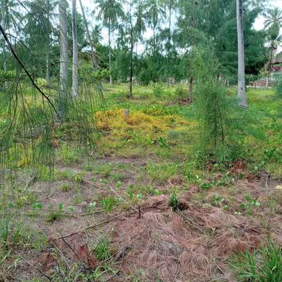 Land for sell image 5